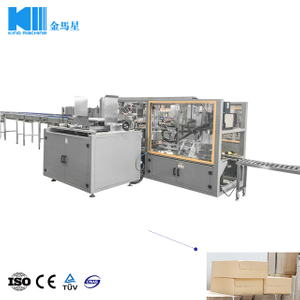 Drop Type Carton Packing Machine